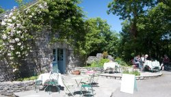 Burren Perfumery Organic Tea Rooms