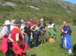Guided Burren National Park Walk