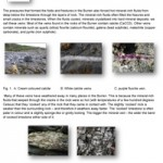 Geology-Sheet-14-Veins-Minerals