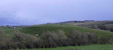 Drumlins near Kilshanny