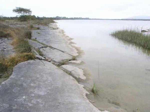 Lough Bunny Shoreline