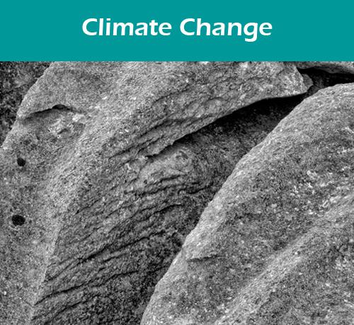 Climate Button
