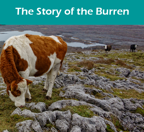 The Story of the Burren