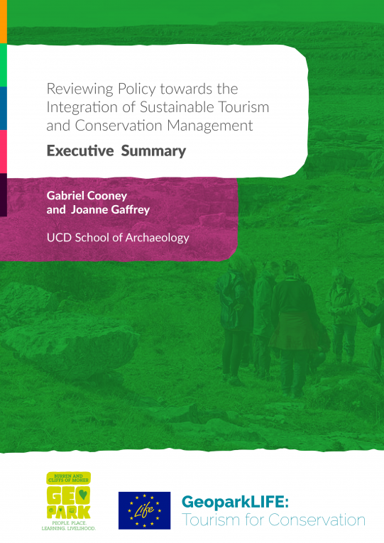 Policy review executive summary