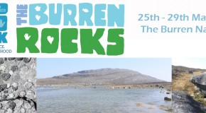 Burren Rocks 2017 copy