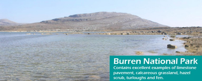 Burren National Park copy