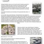 Geology-Sheet-11-Limestone-Pavement