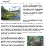 Geology-Sheet-5-Bog-Wood