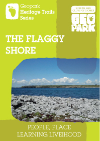 Flaggy Shore cover