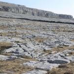 Fig.3 Limestone terrace near Blackhead