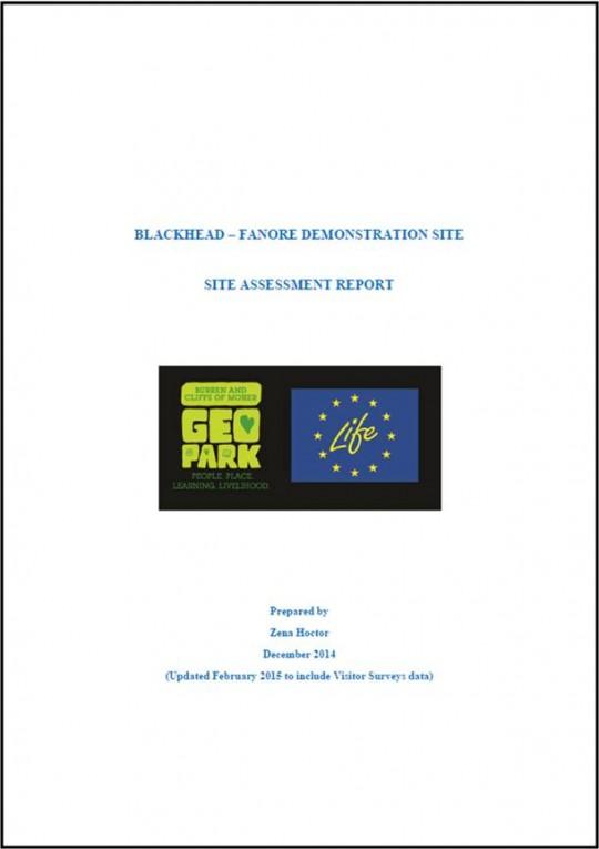 Blackhead - Fanore Site Assessment Report