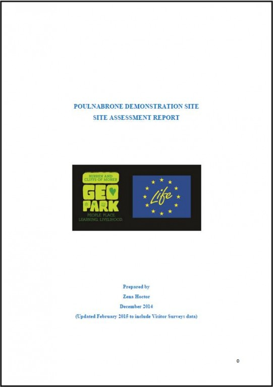 Poulnabrone Site Assessment Report