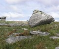 Limestone erratic at Poulnabronne