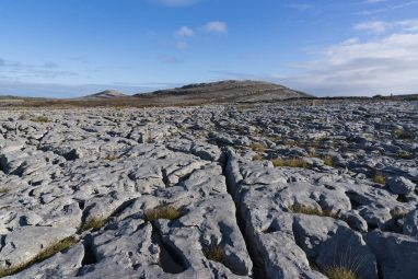 The Limestone Fissures in the Burren