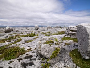 The Story of the Burren - Bright Limestone formed at the equator